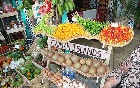The fourteenth Annual Caribbean Week of Agriculture (CWA), one of the Caribbean's most significant Agriculture focused events,
